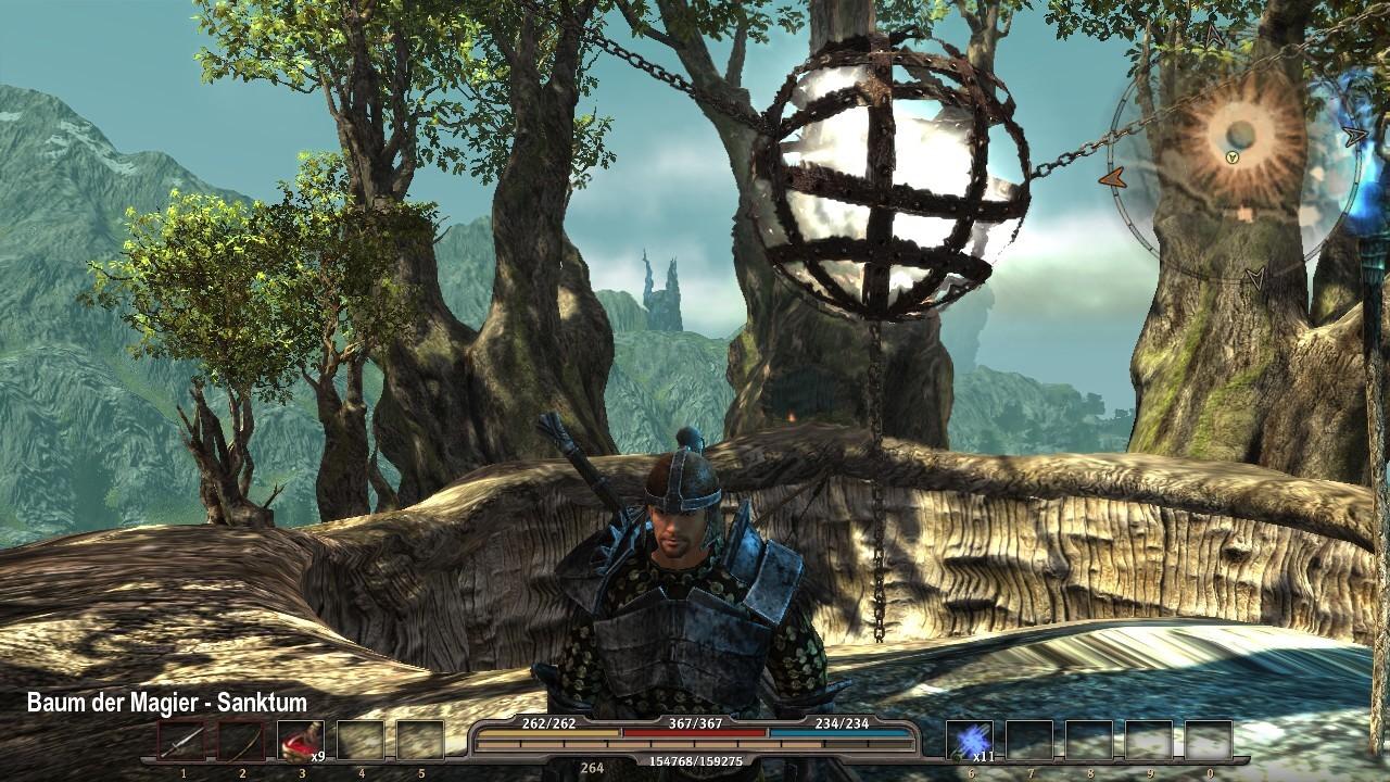 25 Magierbaum oben.jpg