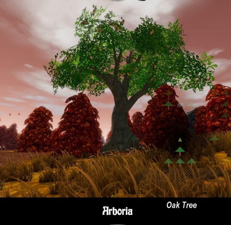 Arboria - Oak Tree Z.jpg