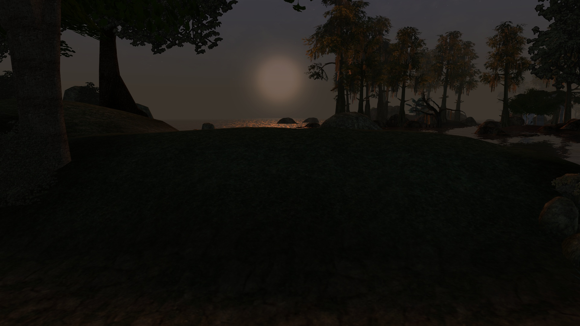 Morrowind 2018-11-05 01.05.28.197.jpg