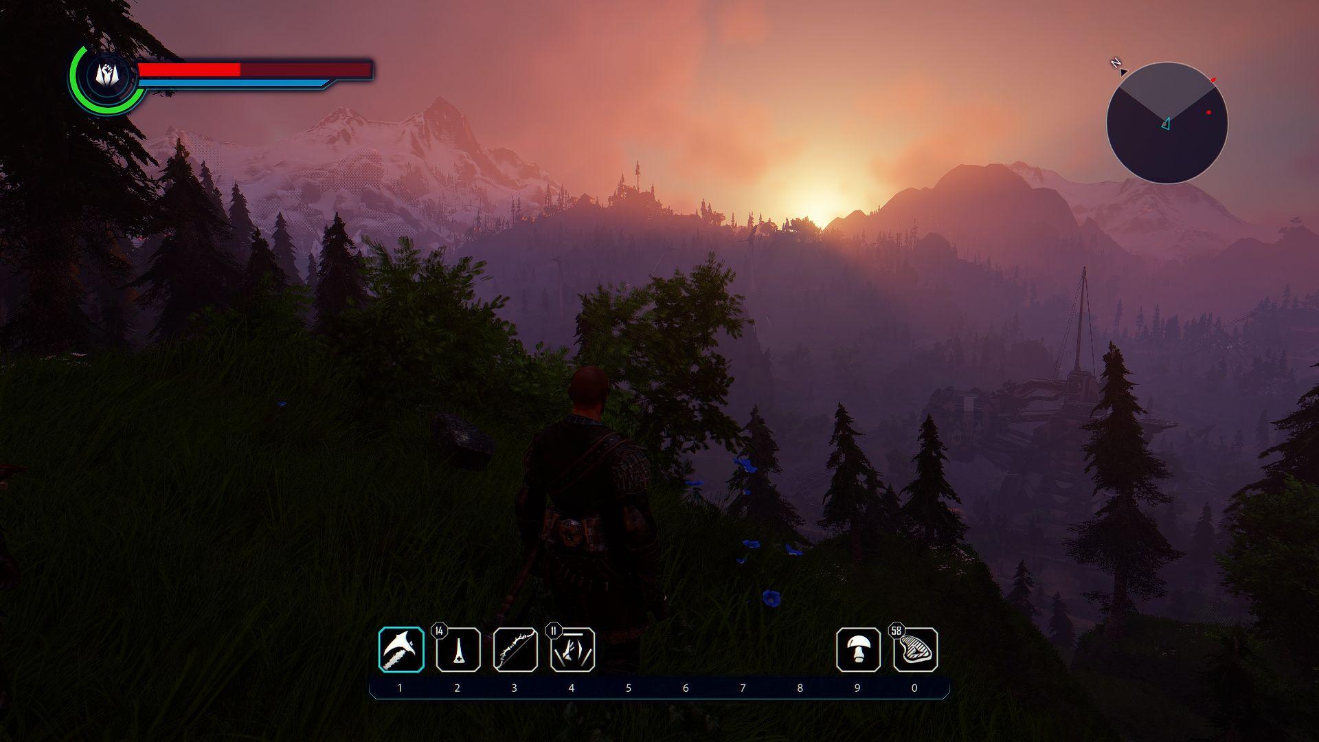 Sonne erwacht.jpg