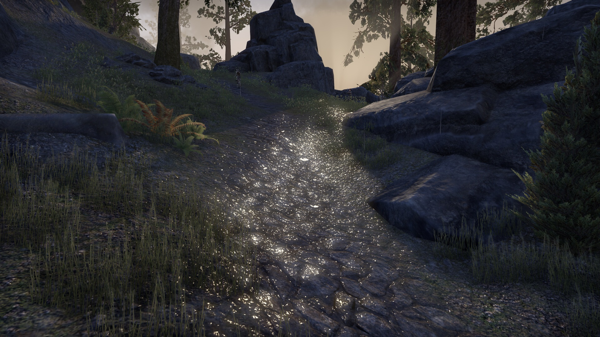 The Elder Scrolls Online_ Tamriel Unlimited (13).jpg