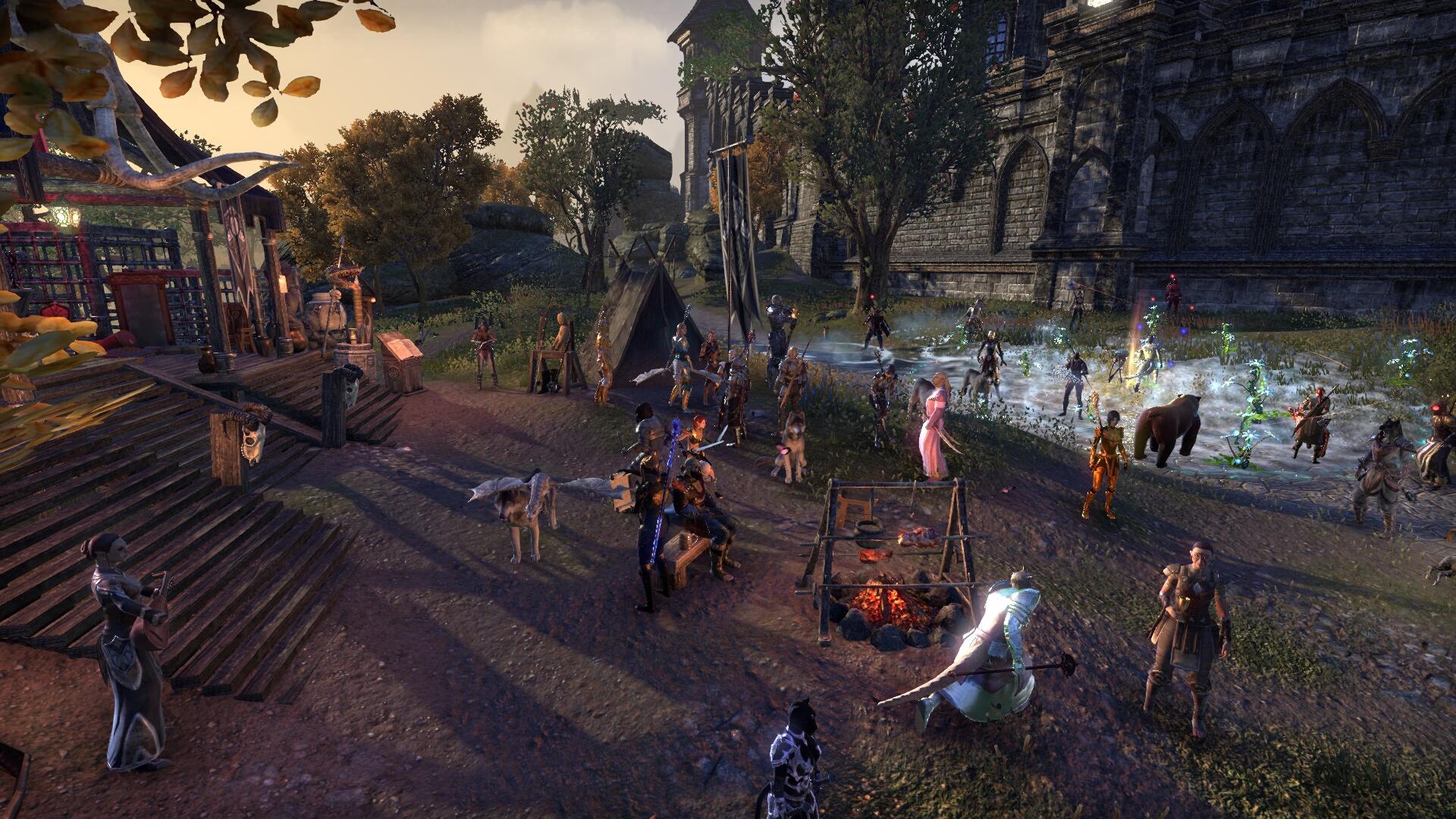 The Elder Scrolls Online_ Tamriel Unlimited (16).jpg
