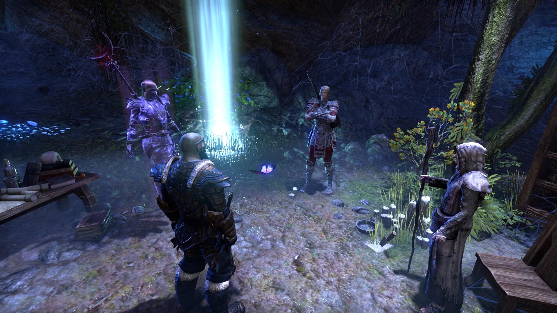 The Elder Scrolls Online_ Tamriel Unlimited (19).jpg