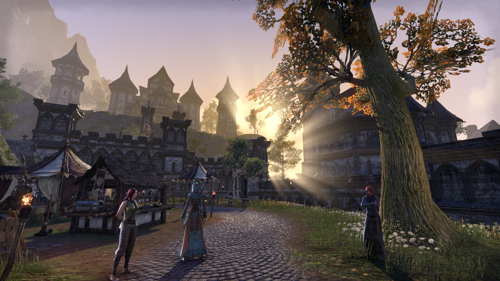 The Elder Scrolls Online_ Tamriel Unlimited (21).jpg