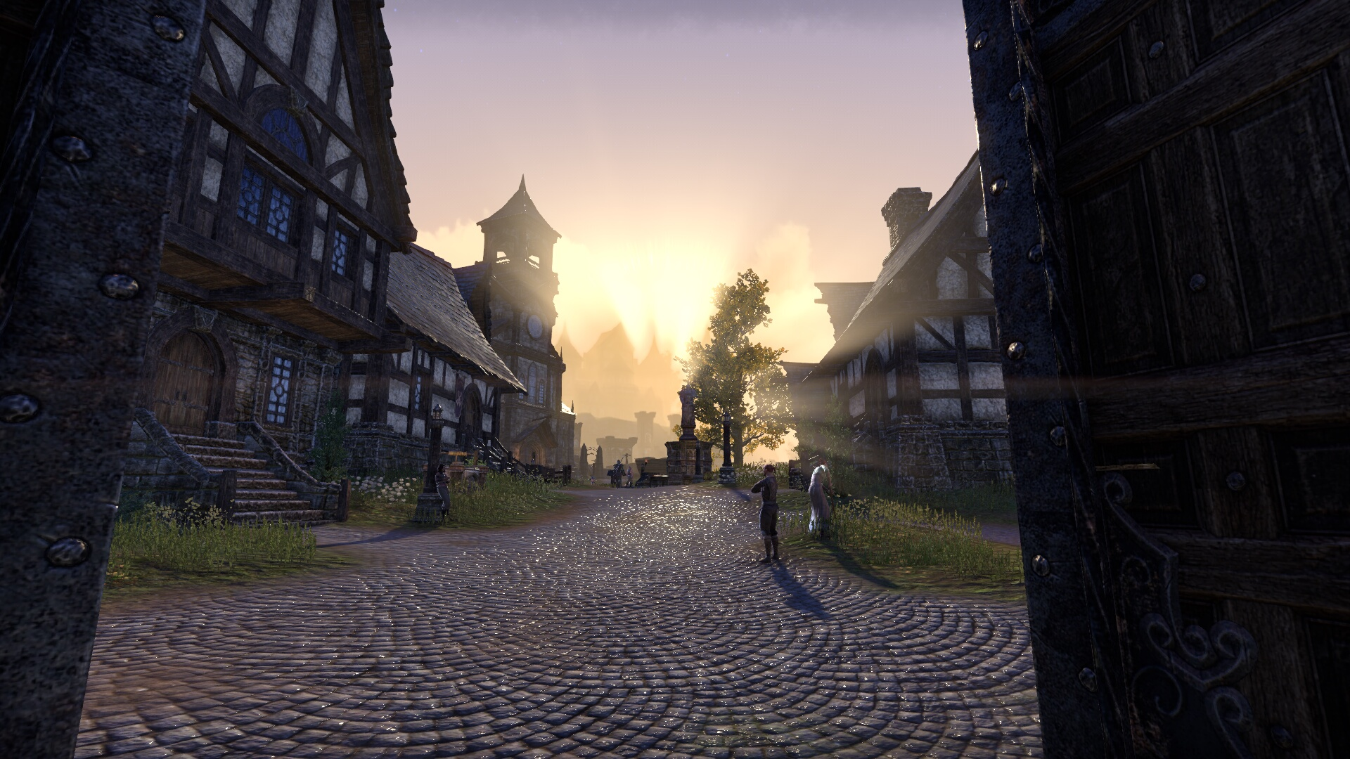 The Elder Scrolls Online_ Tamriel Unlimited (22).jpg