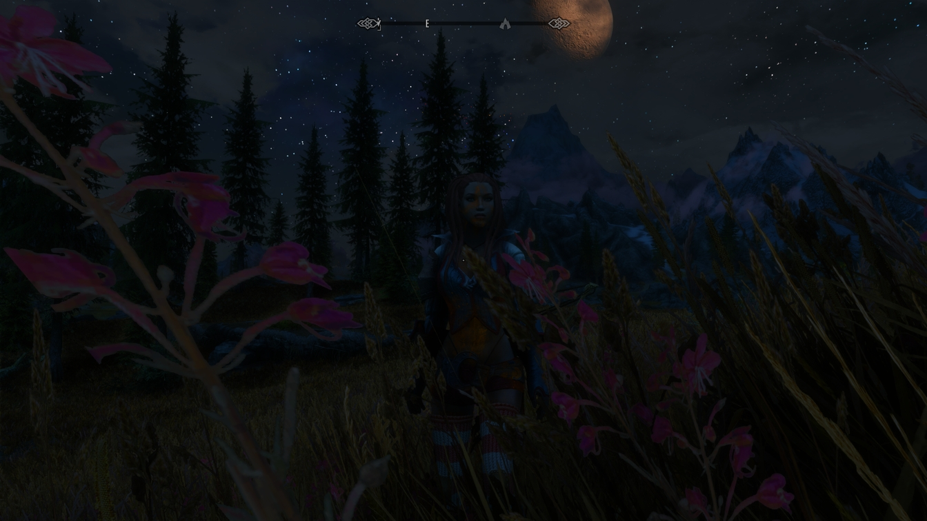 The Elder Scrolls V  Skyrim Special Edition Screenshot 2018.11.07 - 20.53.25.67_ergebnis.jpg