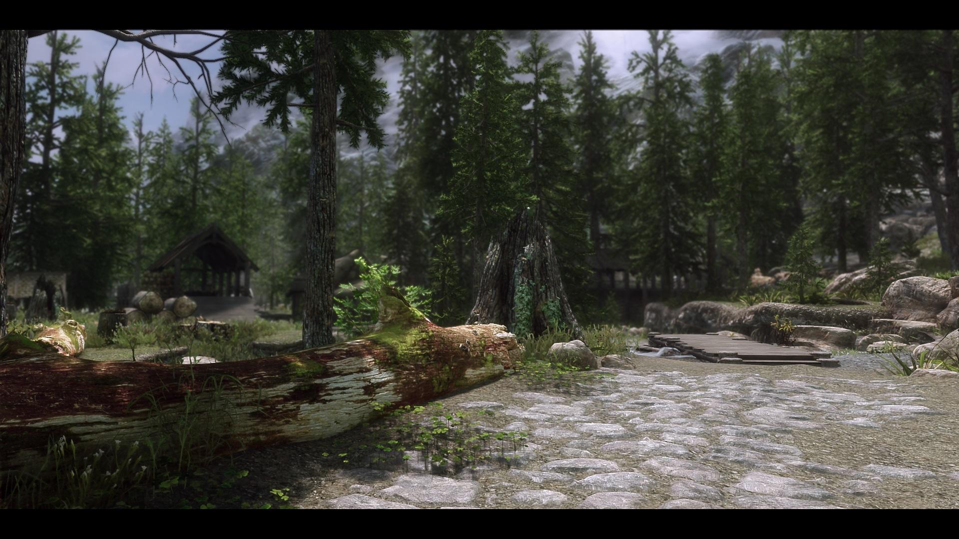 The Elder Scrolls V  Skyrim Special Edition Screenshot 2019.03.02 - 09.35.04.40.jpg