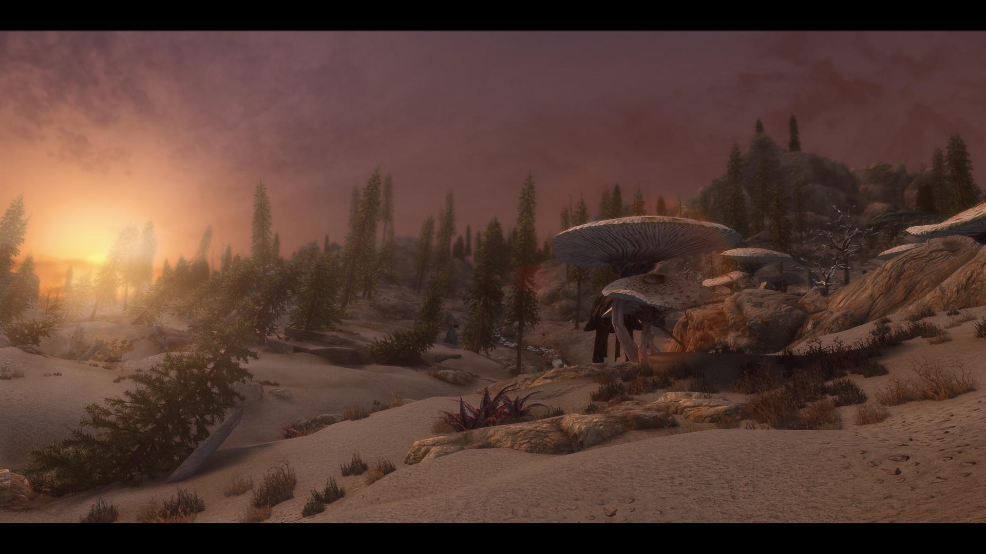 The Elder Scrolls V  Skyrim Special Edition Screenshot 2019.03.02 - 09.44.50.47.jpg