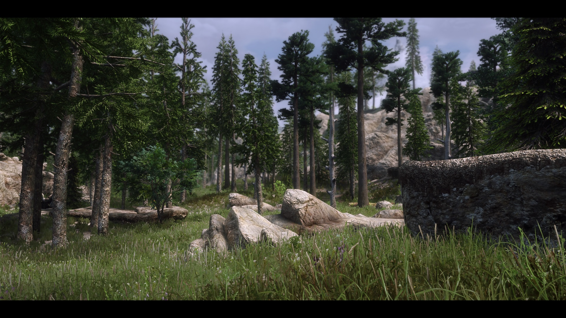 The Elder Scrolls V  Skyrim Special Edition Screenshot 2019.03.06 - 18.05.42.01.jpg