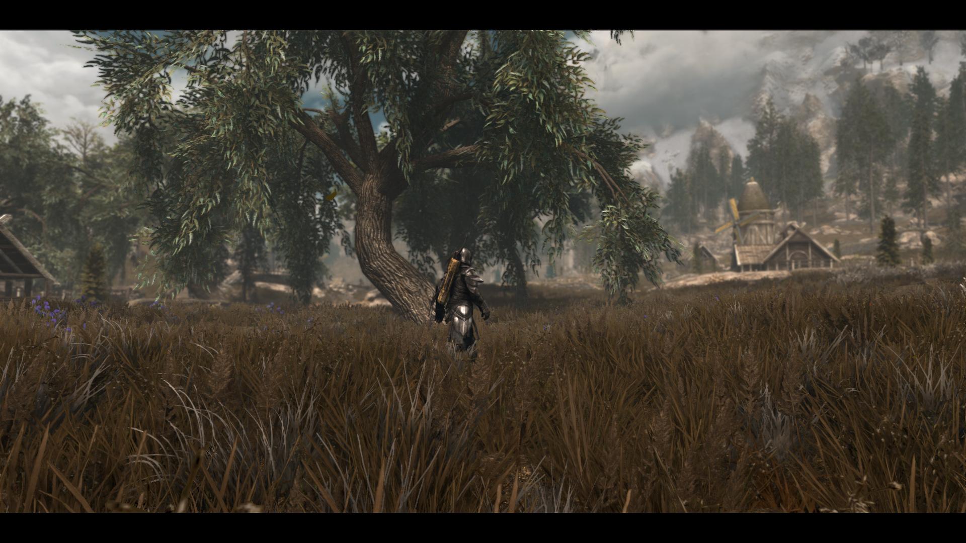 The Elder Scrolls V  Skyrim Special Edition Screenshot 2019.06.14 - 02.03.00.98.jpg